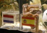 El pulpo Paul en el momento que vaticina que España ganará el Mundial