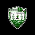 C.D. Afb. Tegueste